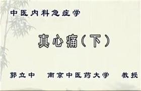 南京中医药大学 中医内科急症学 郭立中 17讲 视频教程