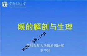 首都医科大学 眼科学 23讲 王宁利 视频教程
