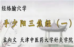 天津中医药大学 经络腧穴学116讲 孟向文 视频教程