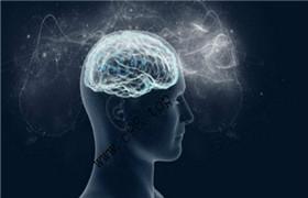 台湾清华大学 认知神经科学