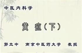 南京中医药大学 中医内科学 郭立中24讲 视频教程